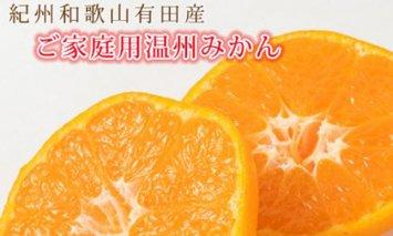 G6021_【ご家庭用訳アリ】紀州有田産温州みかん 7.5kg