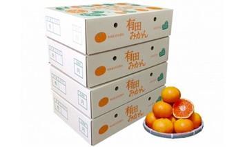 ZE6062_有田みかん 化粧箱 約4.5kg(2S~Lサイズ) 4箱【まごころ手選別】