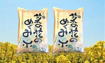 A-185 菜の花めぐみ米【ななつぼし】2kg×2