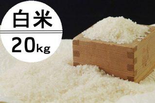 OO006令和2年産大岸の新米(白米)20kg