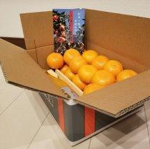 BP6005_かねよし農園 田村みかんジュース1本・みかん3kg(Lサイズ)セット