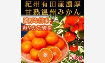 G6019_紀州有田産濃厚甘熟温州みかん 5kg[2020年12月~発送]