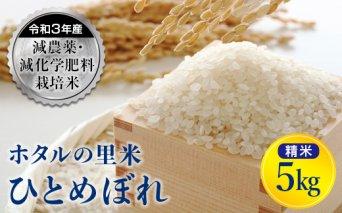 令和3年産【ホタルの里米】減農薬・減化学肥料栽培米 ひとめぼれ 精米 5kg