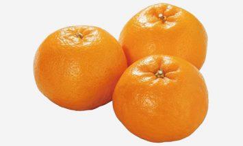 ZB6075_大人気の春柑橘!SWEET柑橘 和歌山県有田産 はるみ 4kg【2021年2月以降出荷】