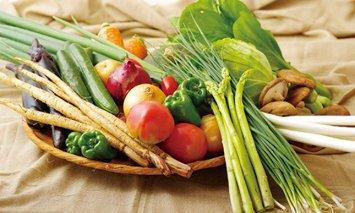 T862 させぼ四季野菜の詰め合わせ