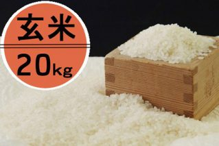 OO008令和2年産大岸の新米(玄米)20kg