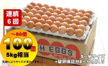 D40-037 【定期便】業務用S~Mサイズ鶏卵100個~80個(5㎏)連続6回