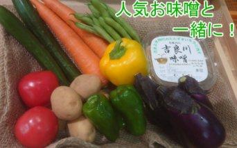 RK081お味噌と野菜8品セット
