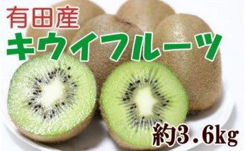 ZD6214_有田でとれた完熟キウイフルーツ 約3.6kg(M~3Lサイズおまかせ)
