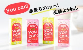 A5-050 you can! ようかん10本入