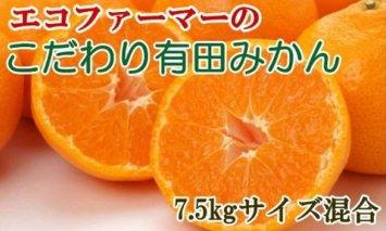 ZD6192_【厳選】エコファーマーのこだわり有田みかん 7.5kg(サイズ混合・秀品)