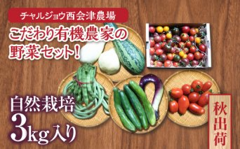 《先行予約》<秋出荷>こだわり有機農家の野菜セット!自然栽培 3kg入り