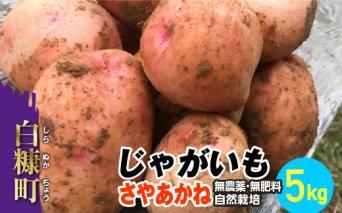じゃがいも(さやあかね)無農薬・無肥料・自然栽培・北海道産【5kg】_I007-0481