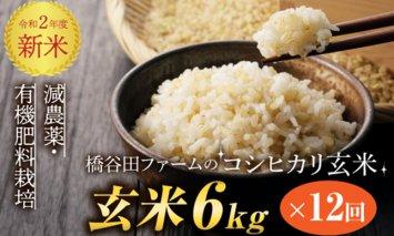 令和2年産新米 <定期便> 減農薬・有機肥料栽培コシヒカリ 玄米 6kg×12回(1カ月に1回)