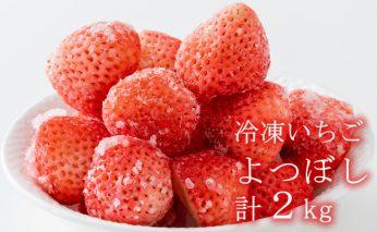 B10-128 新種「よつぼし」冷凍いちご(2kg)しもむら農園