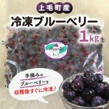 【叶え屋】上毛町産 冷凍ブルーベリー 1kg