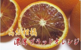 AB6201_【高級柑橘】濃厚ブラッドオレンジタロッゴ5kg