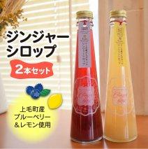 【上毛町産ブルーベリー&レモン使用】ジンジャーシロップ2本セット