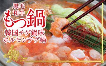 ホルモンチゲ鍋セット 土佐しらぎく(清酒)付き