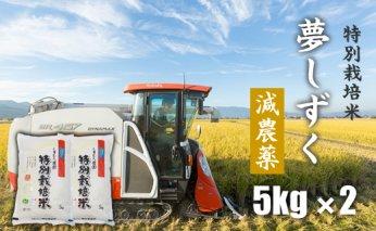 B15-114 特別栽培米 「減農薬」夢しずく(5㎏×2)しもむら農園