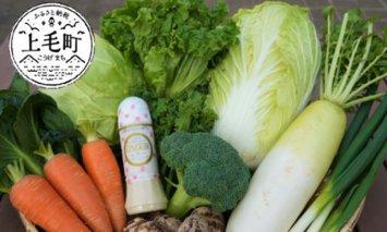道の駅厳選!新鮮野菜詰め合わせとレゾードレッシングセット