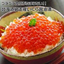 【定期便】全3回(毎月)北海道 網走産 冷凍いくら醤油漬 500g 【14012-30033885】