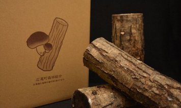 R3N-Ⅰ1 天然原木しいたけ栽培セット