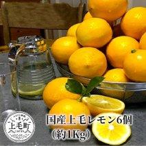 国産上毛レモン 6個(約1kg)