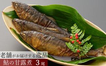 HN140鮎の甘露煮