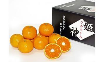 M1107_【旬の品種をお届け】むなかた柑橘ブランド「姫の神」シリーズ5Kg