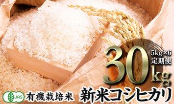 令和2年産新米 <定期便>JAS認定 有機栽培米 コシヒカリ 精米 5kg×6回 (2カ月に1回)