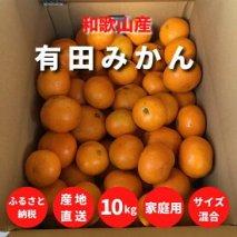 ZE6337_有田みかん 10kg【家庭用】和歌山県産【まごころ手選別】