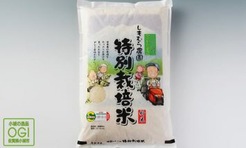 D45-011 特別栽培米さがびより 30kg(玄米)