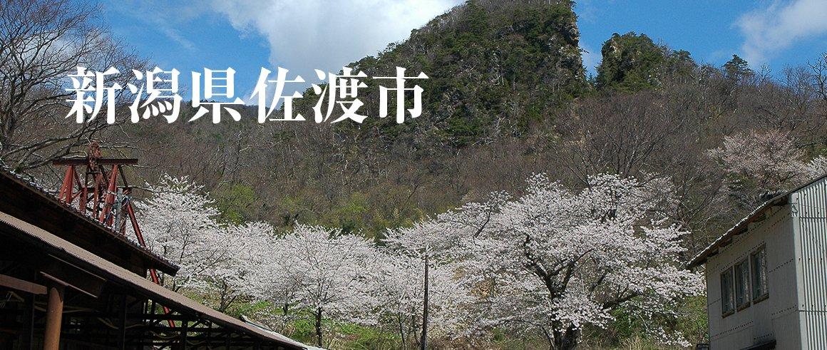 新潟県佐渡市(さどし)