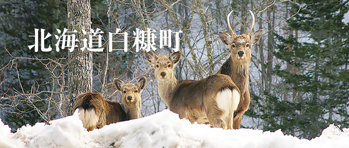 北海道白糠町(しらぬかちょう)