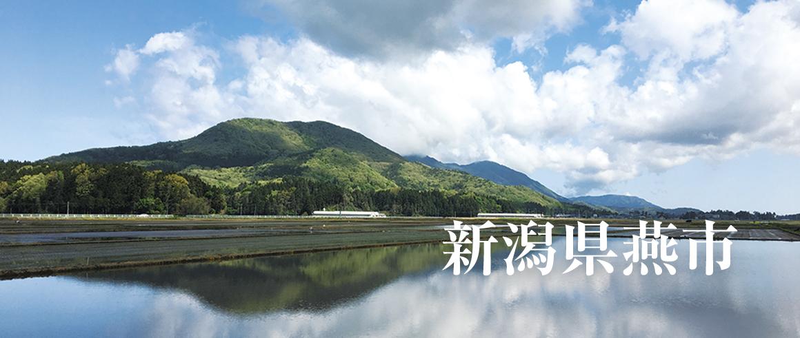 新潟県燕市(つばめし)