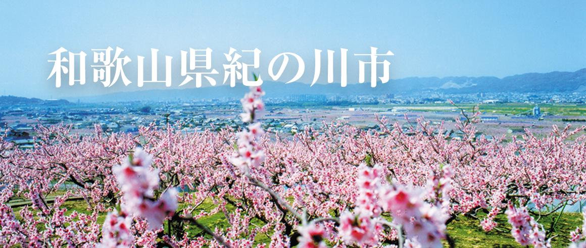 和歌山県紀の川市(きのかわし)