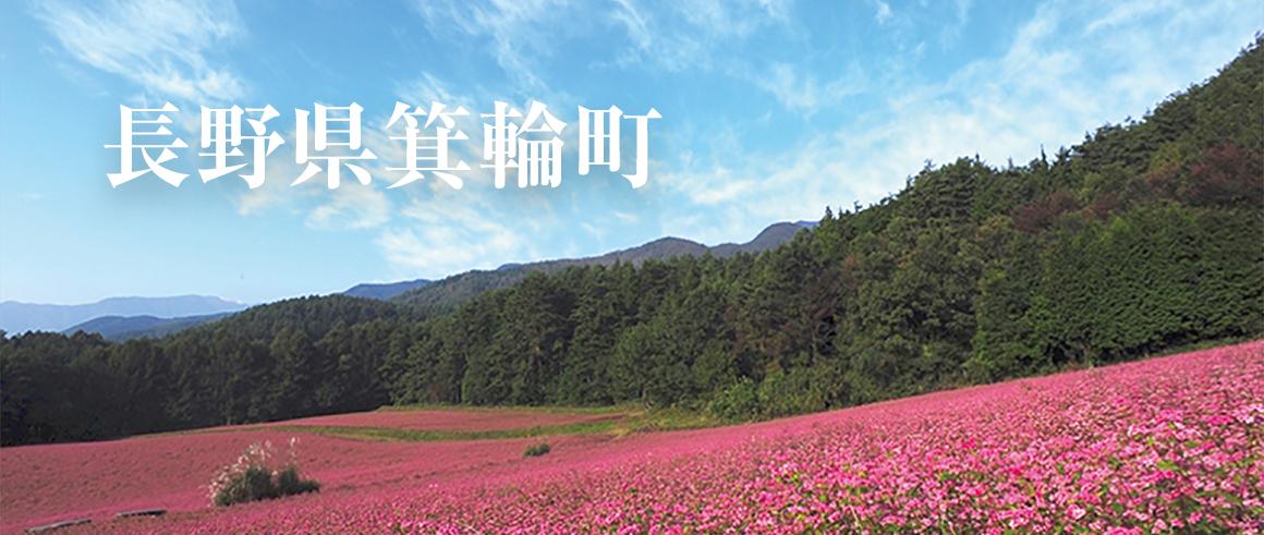 長野県箕輪町(みのわまち)