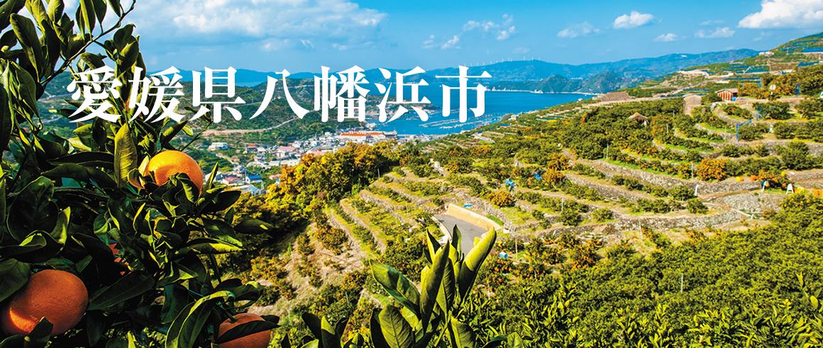 愛媛県八幡浜市(やわたはまし)