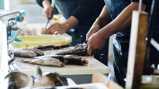 農林漁業・水産業